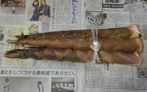 blog91淡竹.jpg