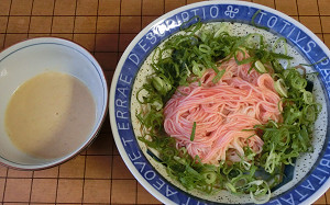 blog素麺梅肉.jpg