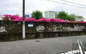 blog03浅香山.jpg