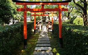 blog14京都競馬場.jpg