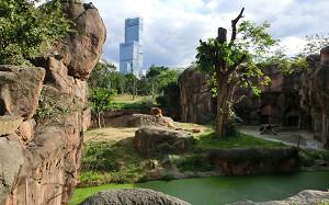 blog48天王寺動物園.jpg