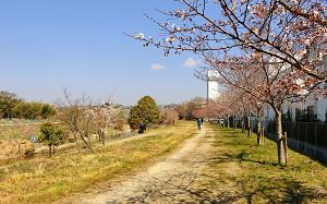 blog51猪名川.jpg