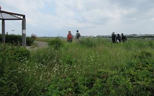 blog52伊丹空港.jpg