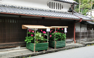 blog63長谷寺.jpg