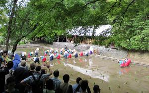 blog69田植祭.jpg