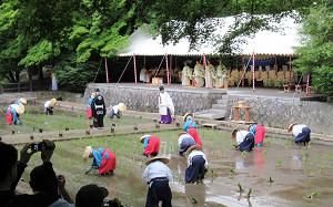 blog70田植祭.jpg