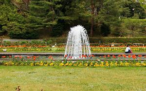 blog71須磨離宮公園.jpg