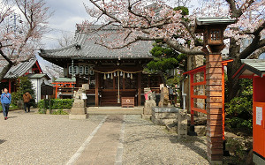 blog72桜井神社.jpg