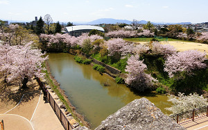 blog75郡山城.jpg
