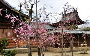 blog78貴布禰神社.jpg