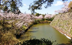 blog78郡山城.jpg