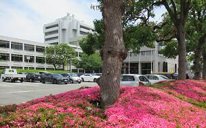blog89吹田市役所.jpg