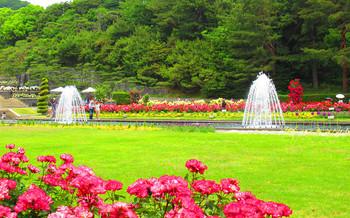 blog05須磨離宮公園.jpg
