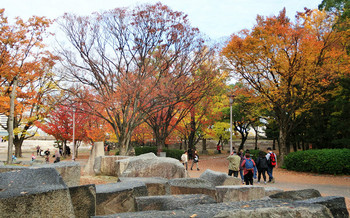 blog25大阪城.jpg