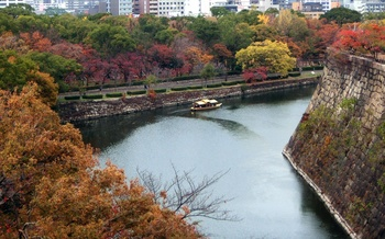 blog31大阪城.jpg